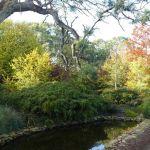 Camawald Garden