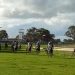 Penola Races